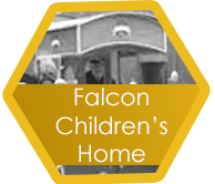 Falcon hexagon
