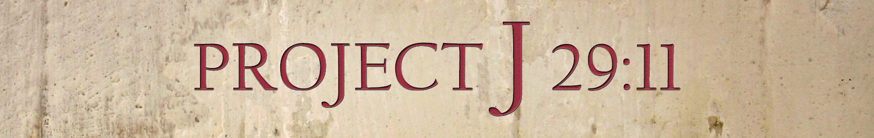 Project J 2911 Banner 2